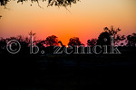 Zimbabwe 07-01-2015-0264